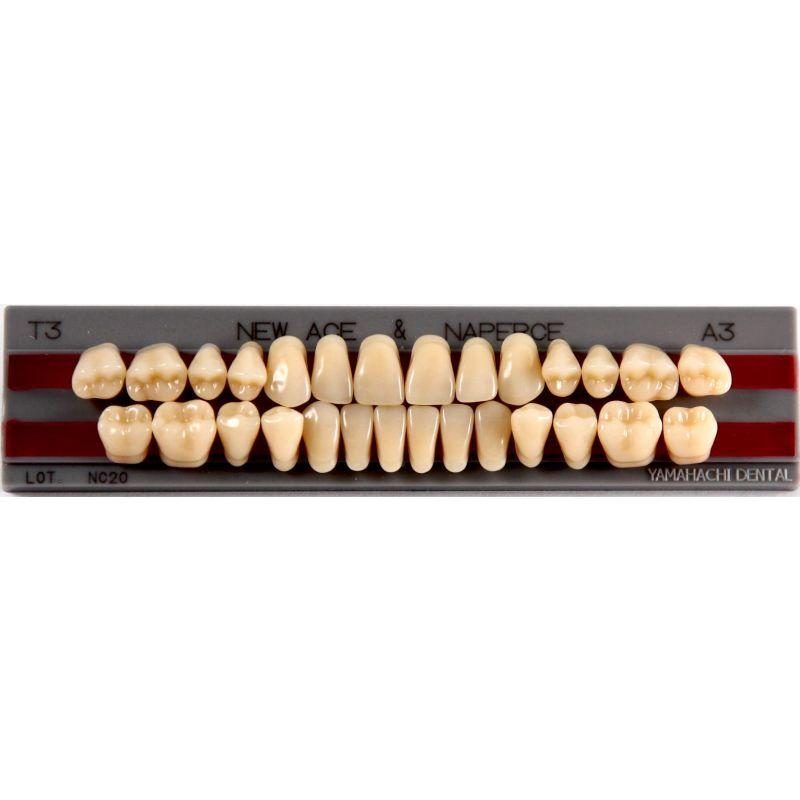 """Зубы""""GLORIA NEW ACE""""фасон T1, цвет В3 (28шт.)"""