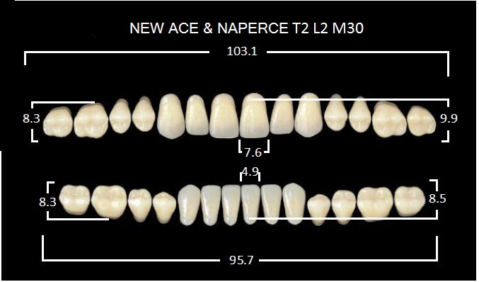 "Зубы""GLORIA NEW ACE""фасон T2, цвет А3 (28шт.)"