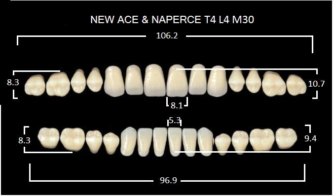 "Зубы""GLORIA NEW ACE""фасон T4, цвет А3 (28шт.)"