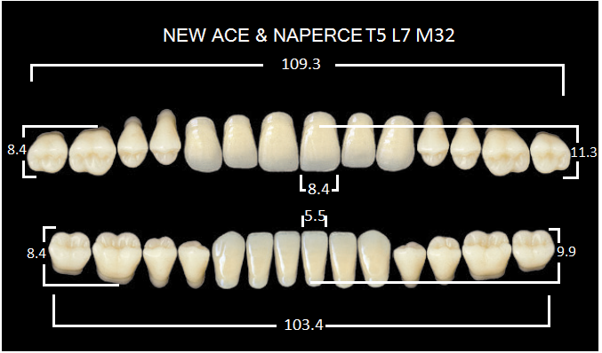 "Зубы""GLORIA NEW ACE""фасон T5, цвет А3.5 (28шт.)"