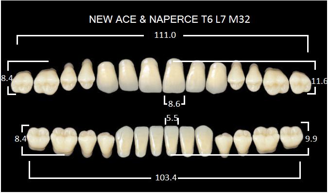 "Зубы""GLORIA NEW ACE""фасон T6, цвет B3 (28шт.)"
