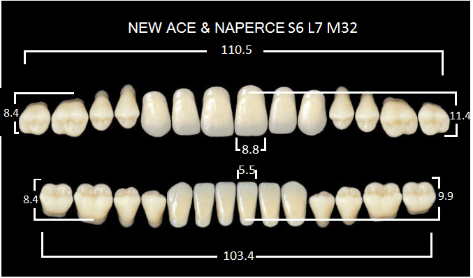 "Зубы""GLORIA NEW ACE""фасон S6, цвет С3 (28шт.)"