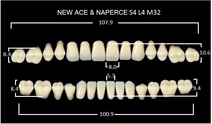 "Зубы""GLORIA NEW ACE""фасон S4, цвет D3 (28шт.)"