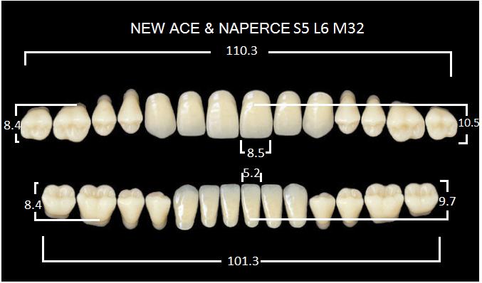 "Зубы""GLORIA NEW ACE""фасон S5, цвет D3 (28шт.)"
