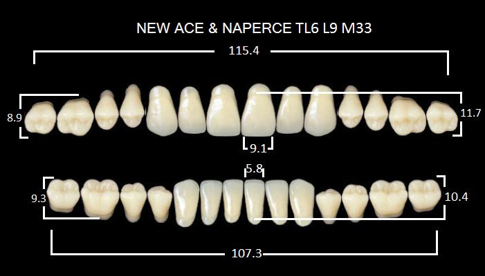 "Зубы""GLORIA NEW ACE""фасон TL6, цвет B3 (28шт.)"