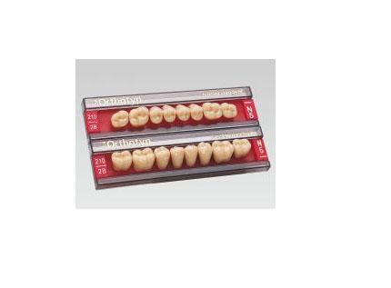 Зубы боковые в/ч 210/28М Ивокляр
