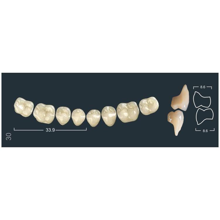 Зубы боковые н/ч 510/30М Ивокляр