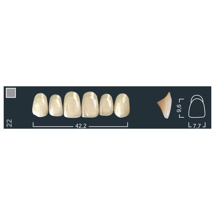 Зубы фронтальные в/ч 130/22 Ивокляр