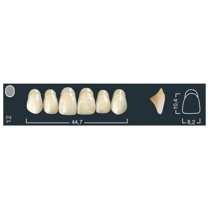 Зубы фронтальные в/ч 510/12 Ивокляр