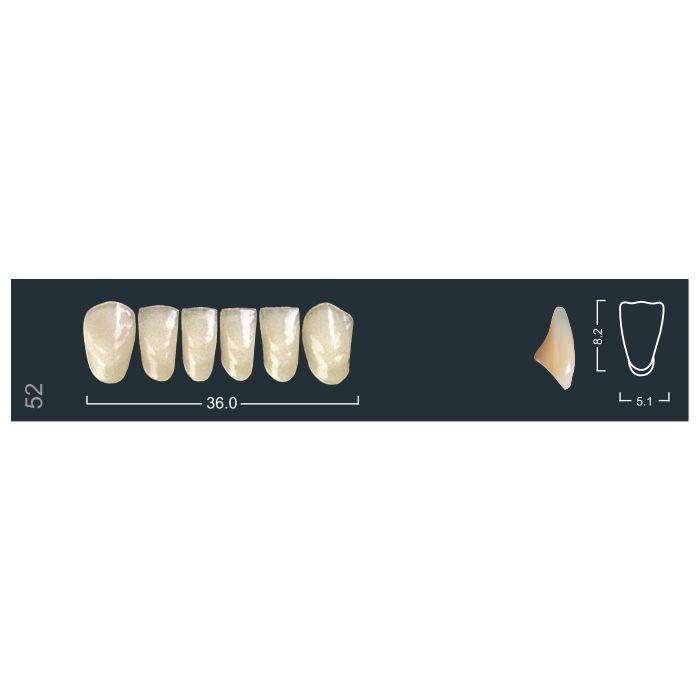 Зубы фронтальные н/ч 510/52 Ивокляр