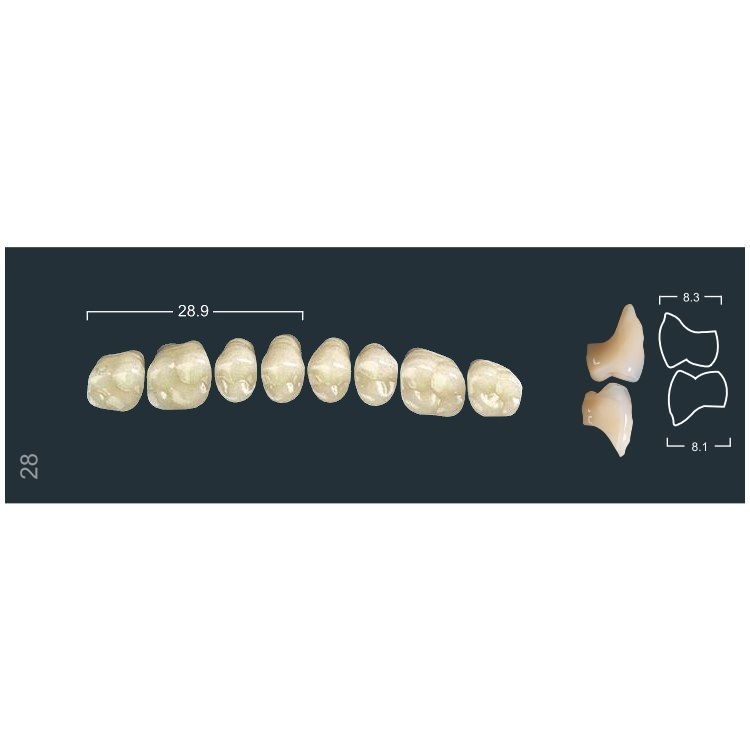 Зубы боковые в/ч 410/28М Ивокляр