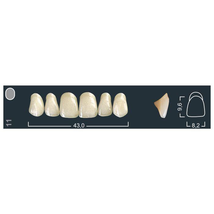 Зубы фронтальные в/ч 410/11 Ивокляр