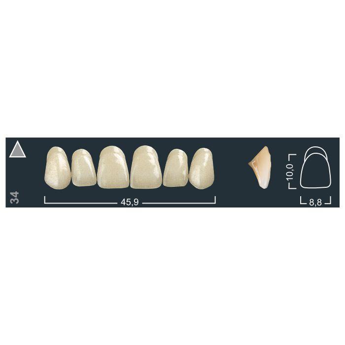 Зубы фронтальные в/ч 140/34 Ивокляр