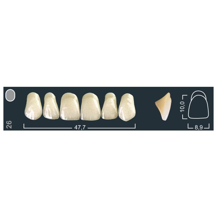 Зубы фронтальные в/ч 420/26 Ивокляр
