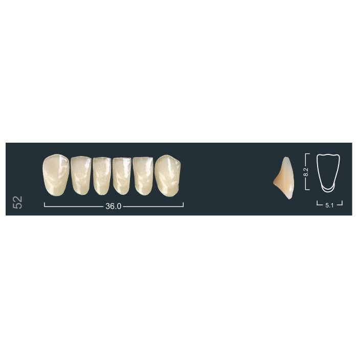 Зубы фронтальные н/ч 310/52 Ивокляр
