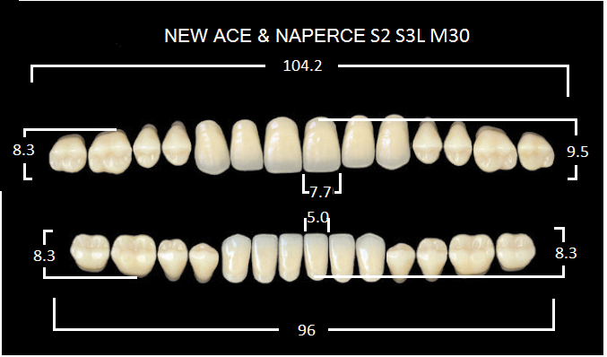 "Зубы""GLORIA NEW ACE""фасон S2, цвет А3 (28шт.)"