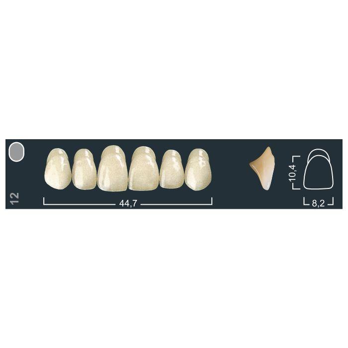 Зубы фронтальные в/ч 220/12 Ивокляр