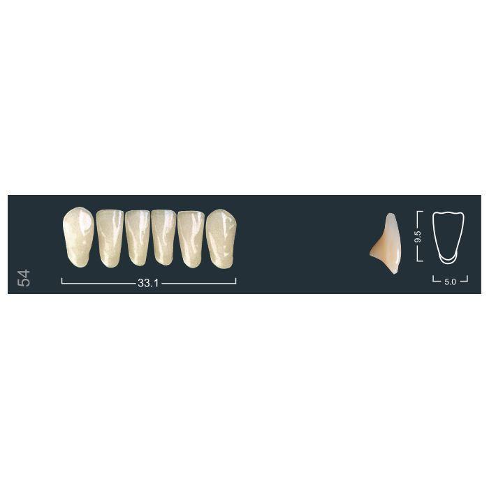 Зубы фронтальные н/ч 220/54 Ивокляр