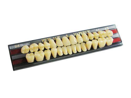 "Зубы""GLORIA NEW ACE""фасон S3, цвет А1 (28 шт)"