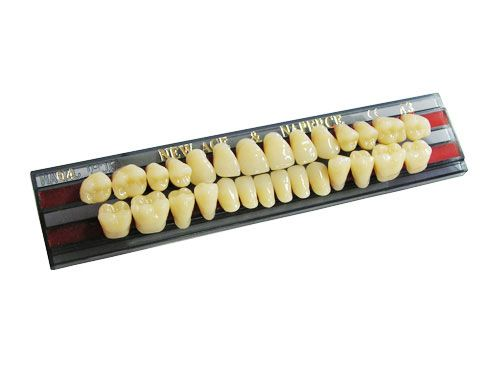"Зубы""GLORIA NEW ACE""фасон SS3, цвет А1 (28 шт)"