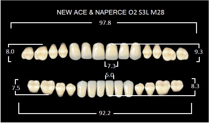 "Зубы""GLORIA NEW ACE""фасон O2, цвет B2 (28шт.)"