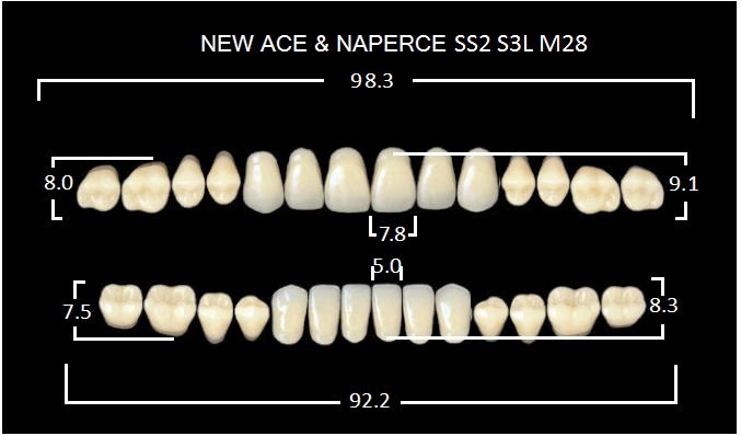"Зубы""GLORIA NEW ACE""фасон SS2, цвет B2 (28шт.)"