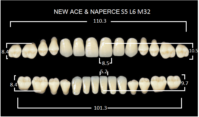 "Зубы""GLORIA NEW ACE""фасон S5, цвет B1 (28шт.)"