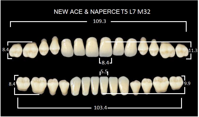 "Зубы""GLORIA NEW ACE""фасон T5, цвет B1 (28шт.)"
